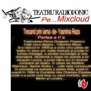 TEATRU RADIOFONIC - Trecand prin iarna -de- Yasmina Reza  (Partea aIIa)
