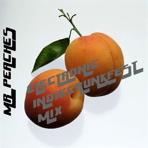 MR_PEACHES Vol. 3 (Electronic Indie Crunkfest Mix)