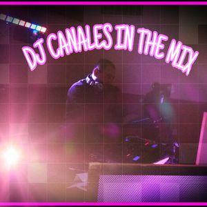 REGATTON MIX 2018 _ DJ CANALES IN THE MIX