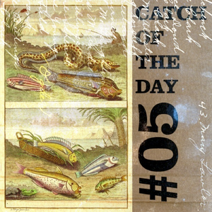 Catch of the Day Volume 05