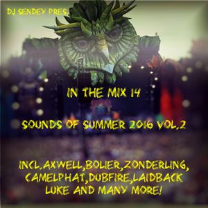 DJ Sendey pres.In The Mix 14 Sounds Of Summer 2016 2