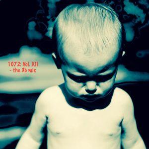 1072 Vol. XII - the 3b mix