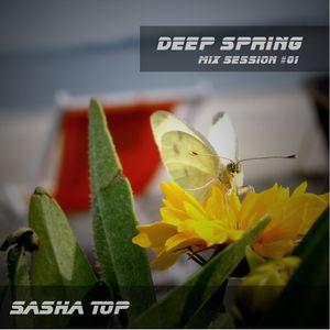 Sasha Top - Deep Spring Mix Sessinon 1