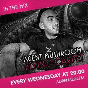 Agent Mushroom - Flying Carpet #07