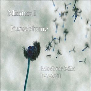 Minimal Pusteblume Moebius 1-7-2011 First One