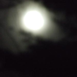 sermonis :  darkness.....silent night