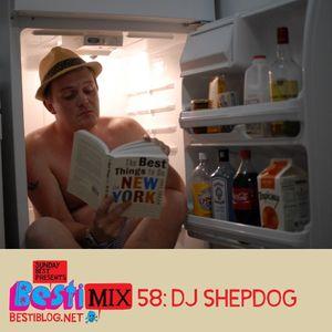 Bestimix 58: DJ Shepdog