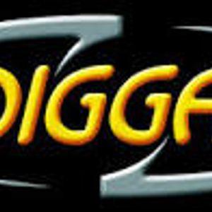 diggadig mix 2014
