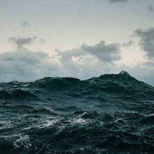 Samsara - Ocean Of Wisdom