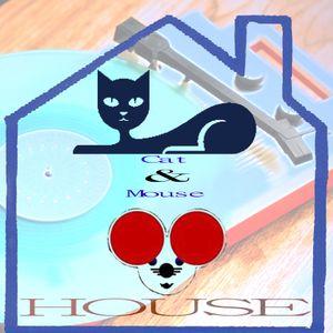 Deep down House Cats