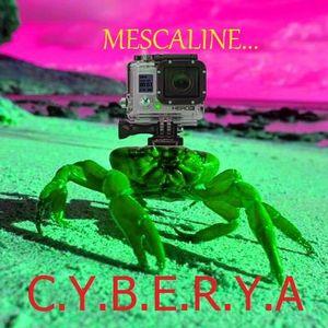 C.Y.B.E.R.Y.A - Mescaline