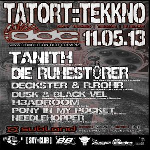 Tanith @ Demolition Dirt Crew Pres. TATORT-TEKKNO - Subland Berlin - 11.05.2013