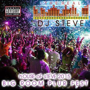 2015 House Of Steve: Big Room Plur Fest