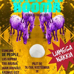 U.Masin&A.Mecha @ Haldjakooma (Genialistide klubi 20.12.2013)