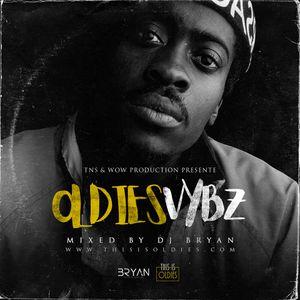 DJ Bryan - Oldies Vybz