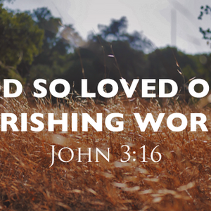 God So Loved Our Perishing World - Audio