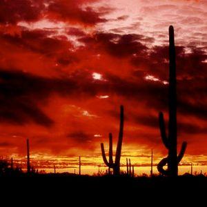 In Arizona Mood
