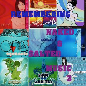 Remembering Naked & Salted Music VOL.3