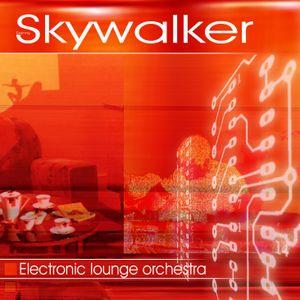 Danny Skywalker - The Sound Of Future (Original Track) - 2004