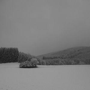 DINOU / Ледяная зима
