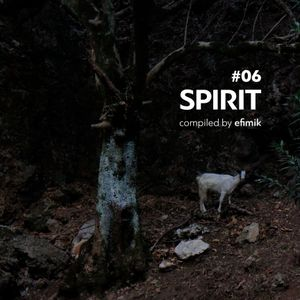 #6 Spirit (compiled by efimik)