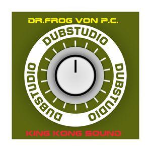 DUB STUDIO SESSION 2013 DR.FROG KINGKONG SOUNDS