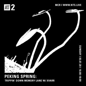 Peking Spring - Trippin' Down Memory Lane w/ XVARR - July 5th 2020