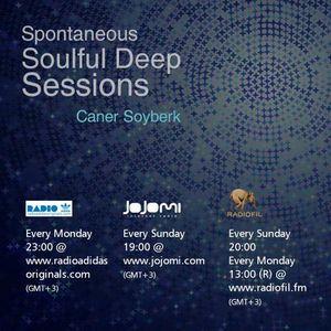 Spontaneous Soulful Deep Sessions #1