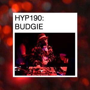 Hyp 190 - Budgie