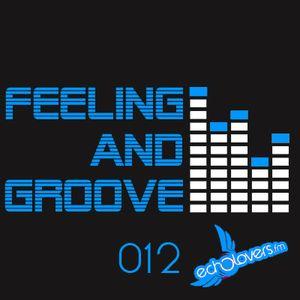 Feeling & Groove 012 @Echolovers FM