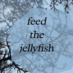 feed the jellyfish