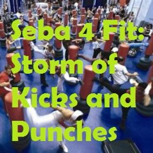 Storm of Kicks & Punches