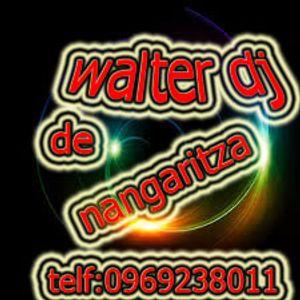 dj walter rmx