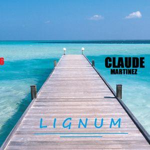 techno SUMMER 2016 by CLAUDE MARTINEZ (LIGNUM techno club))