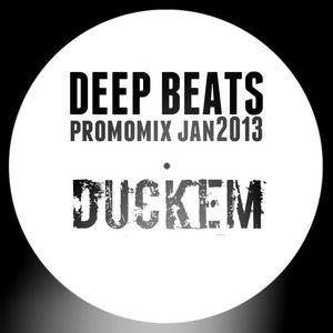 DeepBeats promomix Jan13 - DUCKEM