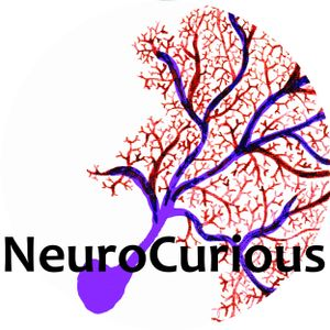 Episode 9: Neuromyths with Laura Flores Shaw