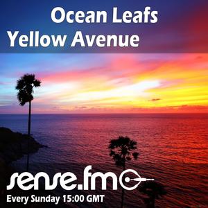 Ocean Leafs - Yellow Avenue 004 (12-07-08)