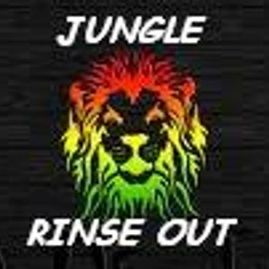 jungle rinse out n ting......