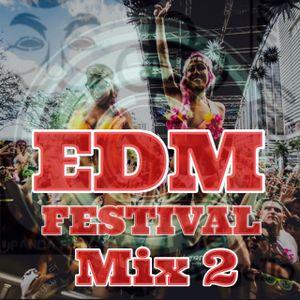 EDM FESTIVAL Mix 2