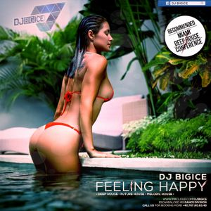 DJ BIGICE - Feeling Happy (DJ MIXTAPE)