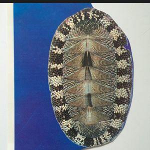 Détente Aux Enfers (31.01.18) w/ Nummer & Marble