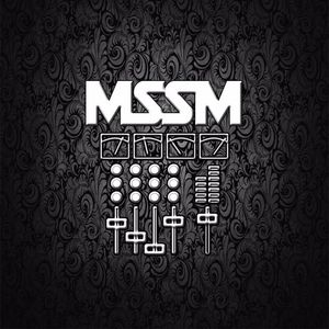 MSSM- Winter Schatz Vermiss