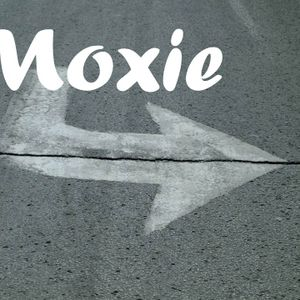 Moxiesession4 - Crowdsourcing