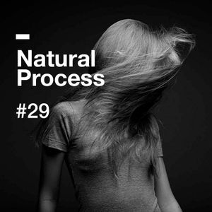 Natural Process #29