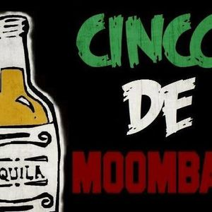 Shotty305- Mad Electro & Cinco De Moomba+ Live Stream