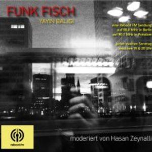 Yayın balığı #48 Sustainable Devolpment Goals (Teil 2) mit Hasan Zeynali (2021-05-09)
