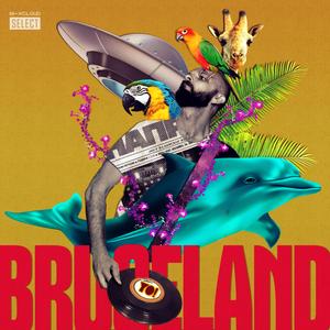 Bruceland #33