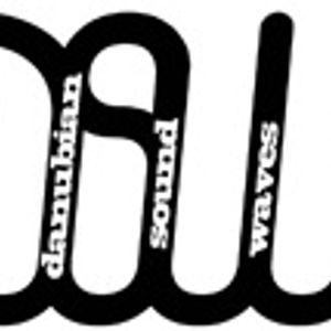Danubian Sound Waves Radio Show 048 Mixed By Czolos
