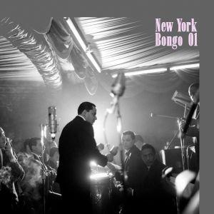 Santo Remedio - New York Bongo 01