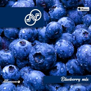 Ilya Nekhoroshev - Blueberry Mix